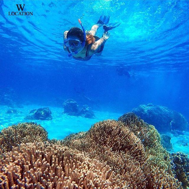 30 Ternate Images Pinterest Indonesia Maluku Islands Teluk Jikomalamo Utara