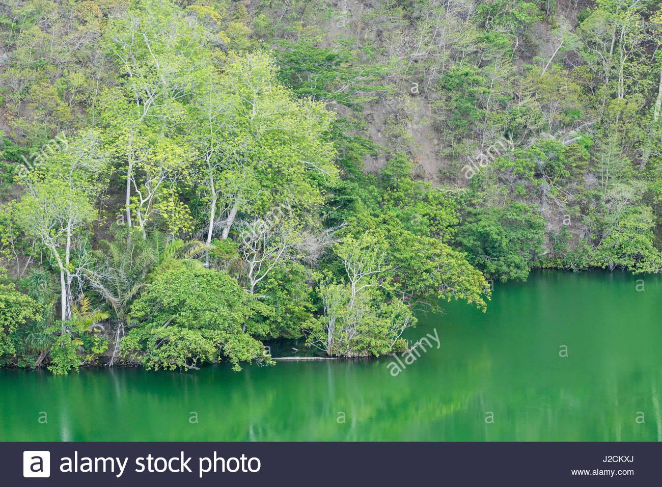 Ternate Island Indonesia Stock Photos Maluku Utara Kota Trees Green