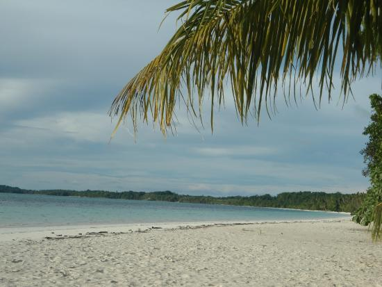 Pantai Pasir Panjang Tual Maluku Tenggara Foto Kota