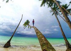 View Maluku Tenggara Kota Tual Landscaping Explore 2 304 Likes