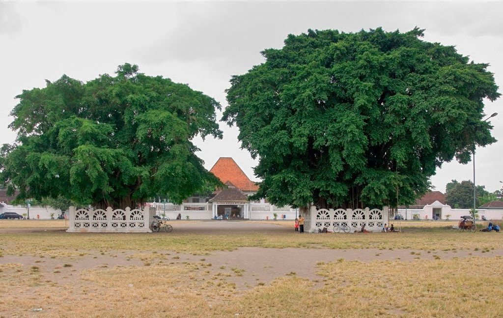 Alun Kidul Jogja Lapangan Luas Belakang Keraton Yogyakarta Posisinya Terletak