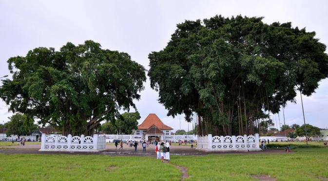Mitos Terbakarnya Beringin Kembar Alun Yogya Jadiberita Kidul Yogyakarta Kota
