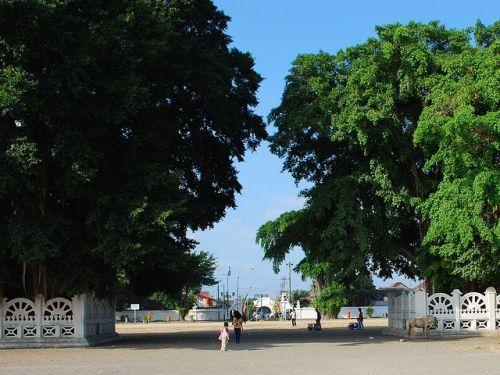 Paket Wisata Alun Kidul Yogyakarta Www Ikhsanrentalmobil Home Kota