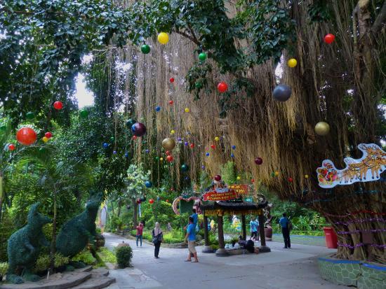 10 Gambar Kebun Binatang Gembira Loka Zoo Jogja Harga Tiket