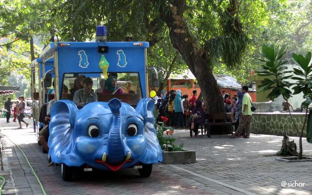 Asyik Keliling Gembira Loka Yogyakarta Bermodal Taring Manfaatkan Alat Transportasi