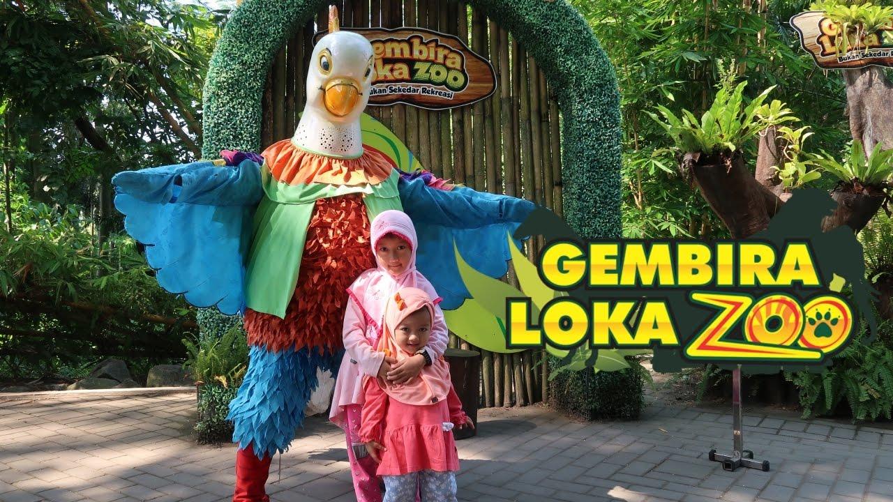 Berwisata Kebun Binatang Gembira Loka Yogyakarta Youtube Bonbin Kota