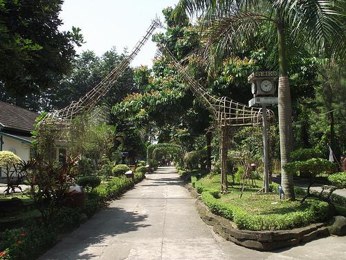 Gembira Loka Kebun Binatang Yogyakarta Kang Java Maupun Langka Display