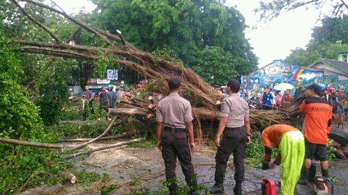 Gembira Loka Yogyakarta Tutup Dua Hari Tribunnews Bonbin Kota
