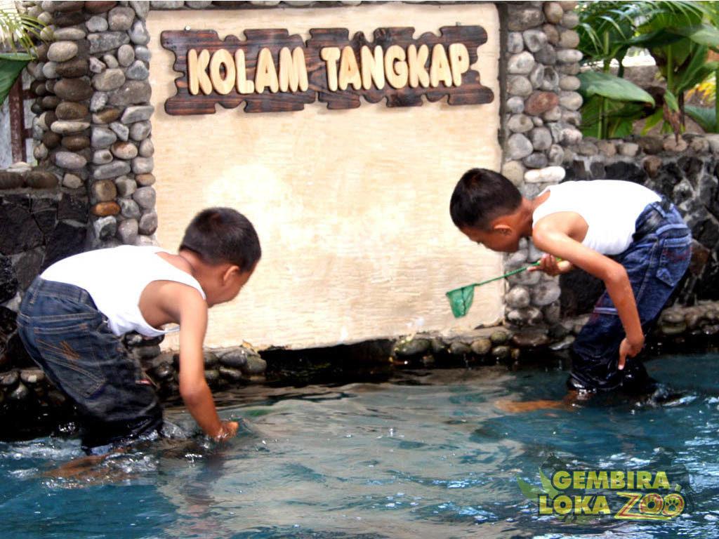 Gembira Loka Zoo Kebun Binatang Keren Yogyakarta Kolam Tangkap Anak
