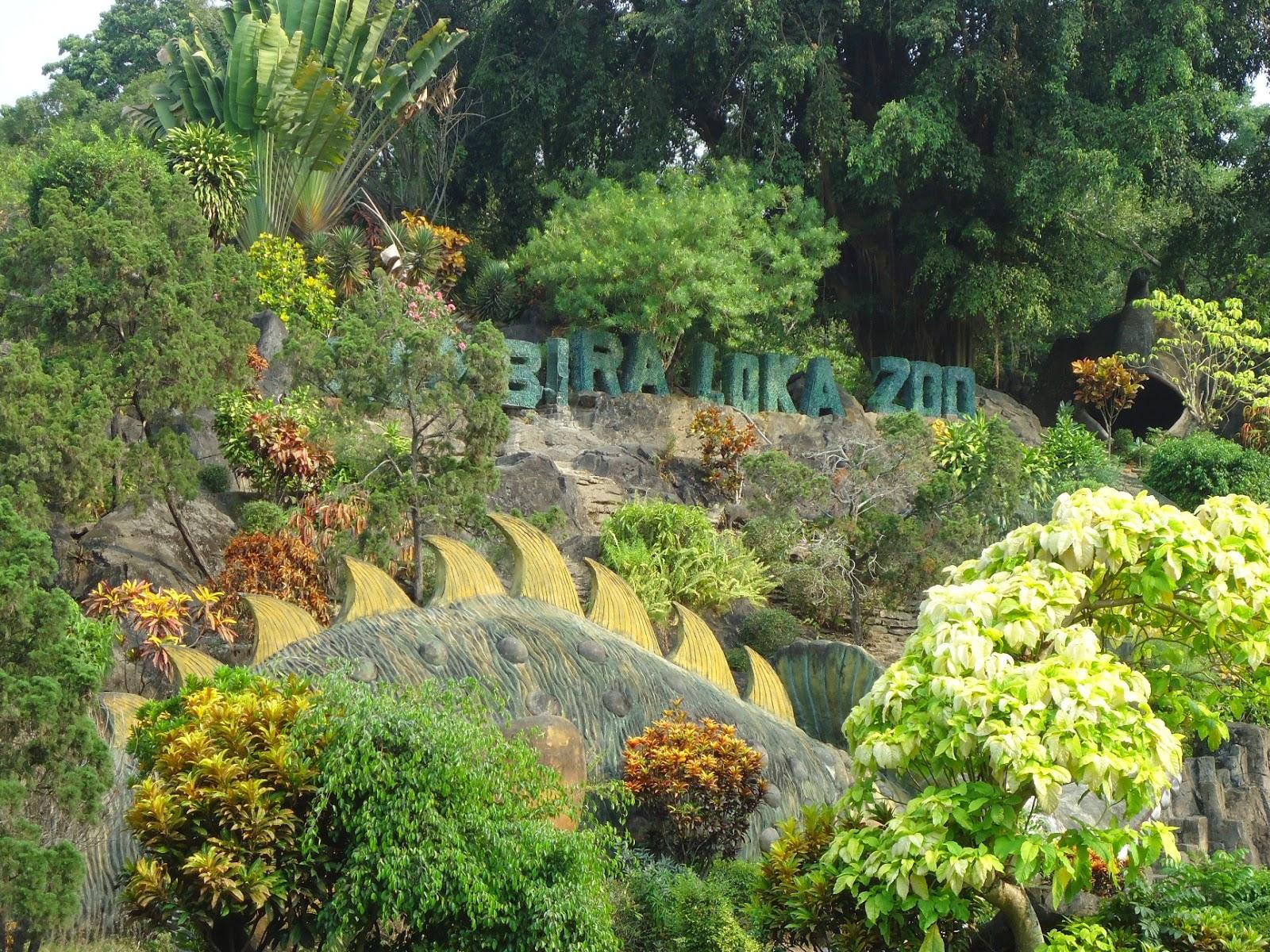 Gembira Loka Zoo Liburan Asik Bersama Kecil Yogyakarta Bonbin Kota