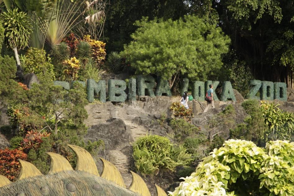 Infromasi Lengkap Wisata Kebun Binatang Gembira Loka Yogyakarta Terkini Bonbin