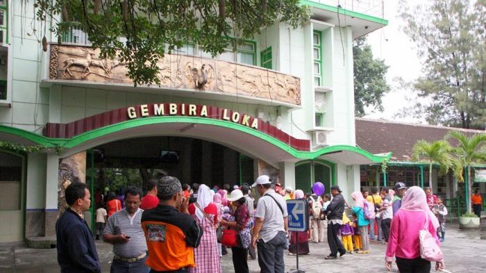 Kunjungan Gembira Loka Liburan Natal Capai 16 185 Pengunjung Bonbin