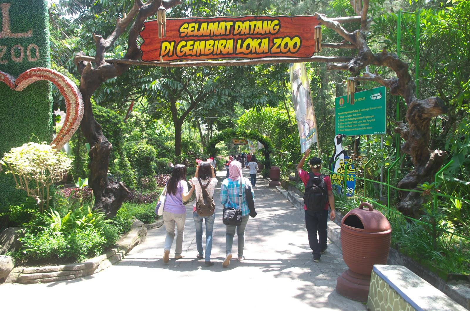 Memperkenalkan Satwa Anak Berkunjung Gembira Loka Zoo Bonbin Yogyakarta Kota