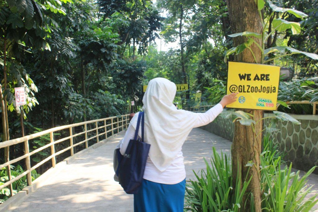 Mengenal Lebih Dekat Gembira Loka Zoo Kebun Binatang Kebanggaan Warga