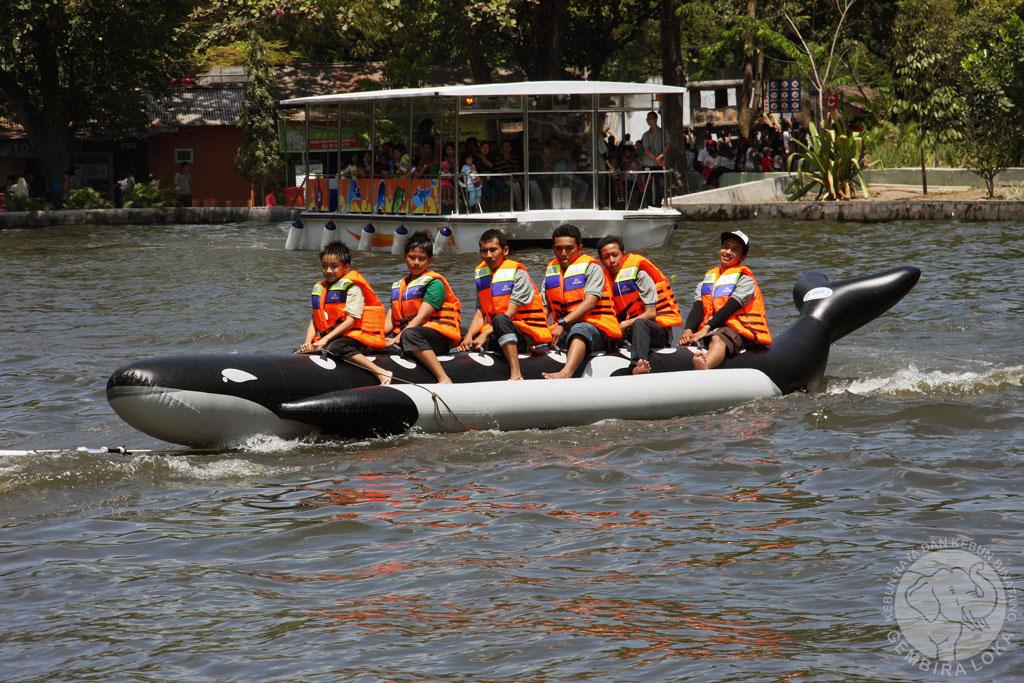 Menikmati Aneka Permainan Seru Gembira Loka Zoo Wisata Yogyakarta Bonbin