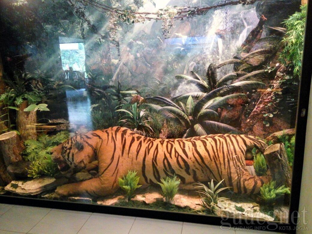 Museum Kebun Binatang Gembira Loka Yogya Gudegnet Yogyakarta Bonbin Kota