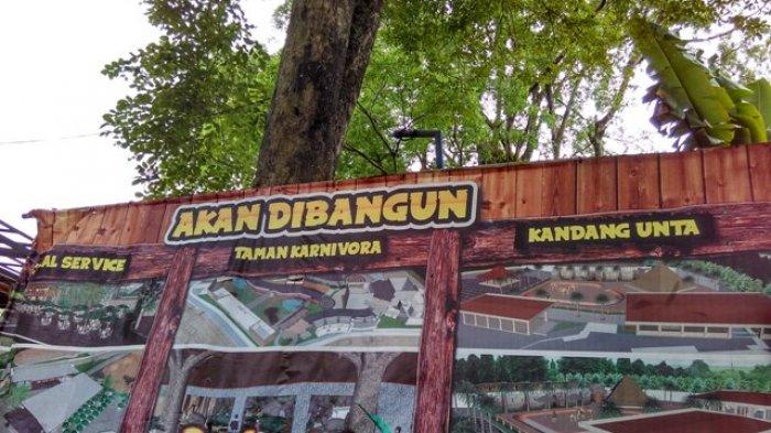 Siapkan Taman Karnivora Gembira Loka Bakal Datangkan 22 Satwa Buas