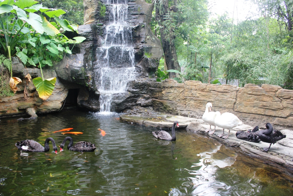 Wahana Wisata Anak Jogja Yogyakarta Part 2 Gembira Loka Zoo