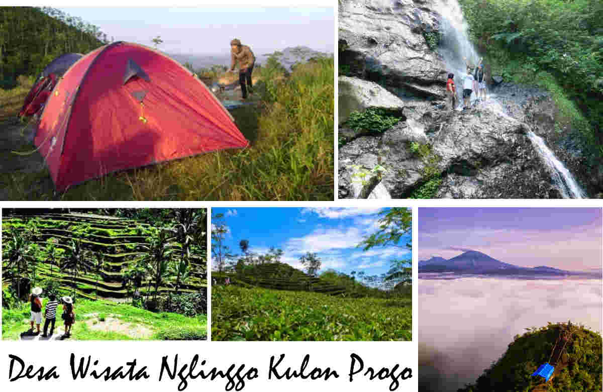 Indahnya Desa Wisata Nglinggo Alam Nglingo Kulon Progo Jogja Kebun