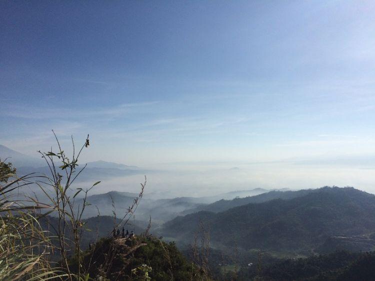 Kebun Teh Nglinggo Alternatif Wisata Jogja Adem Kota Yogyakarta