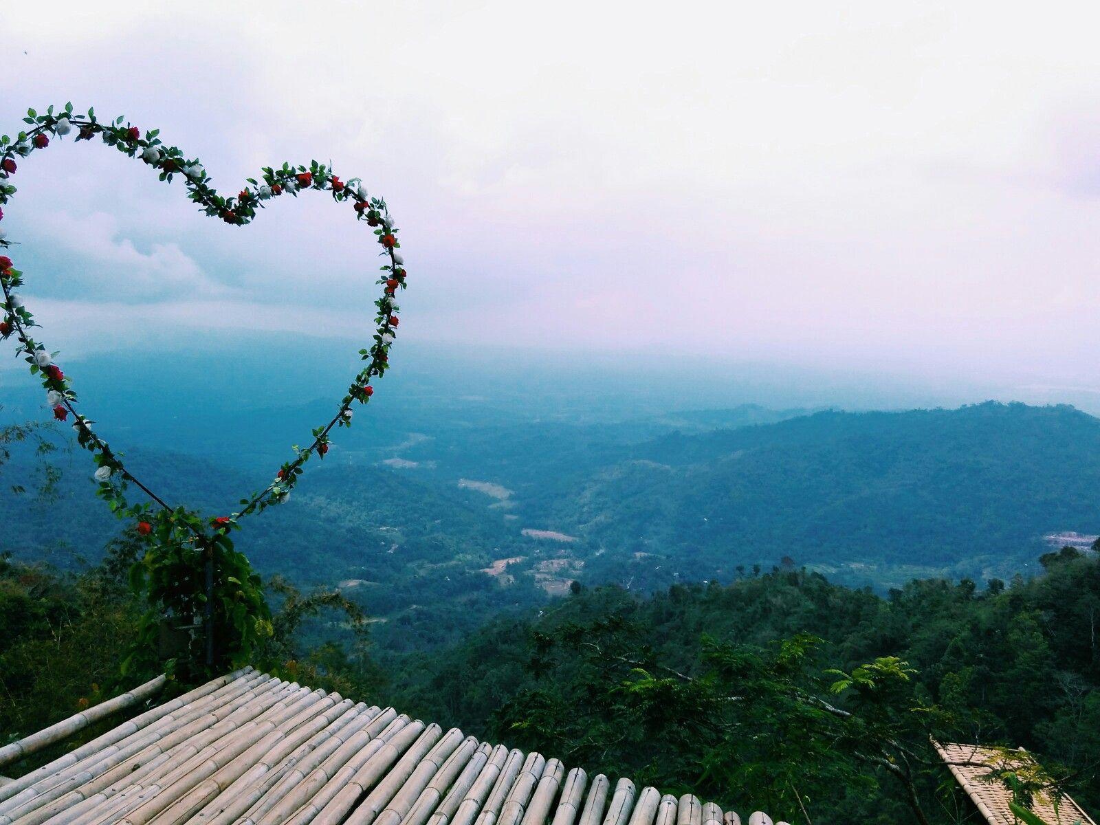 Kebun Teh Nglinggo Samigaluh Kulon Progo Yogyakarta Indonesia Kota