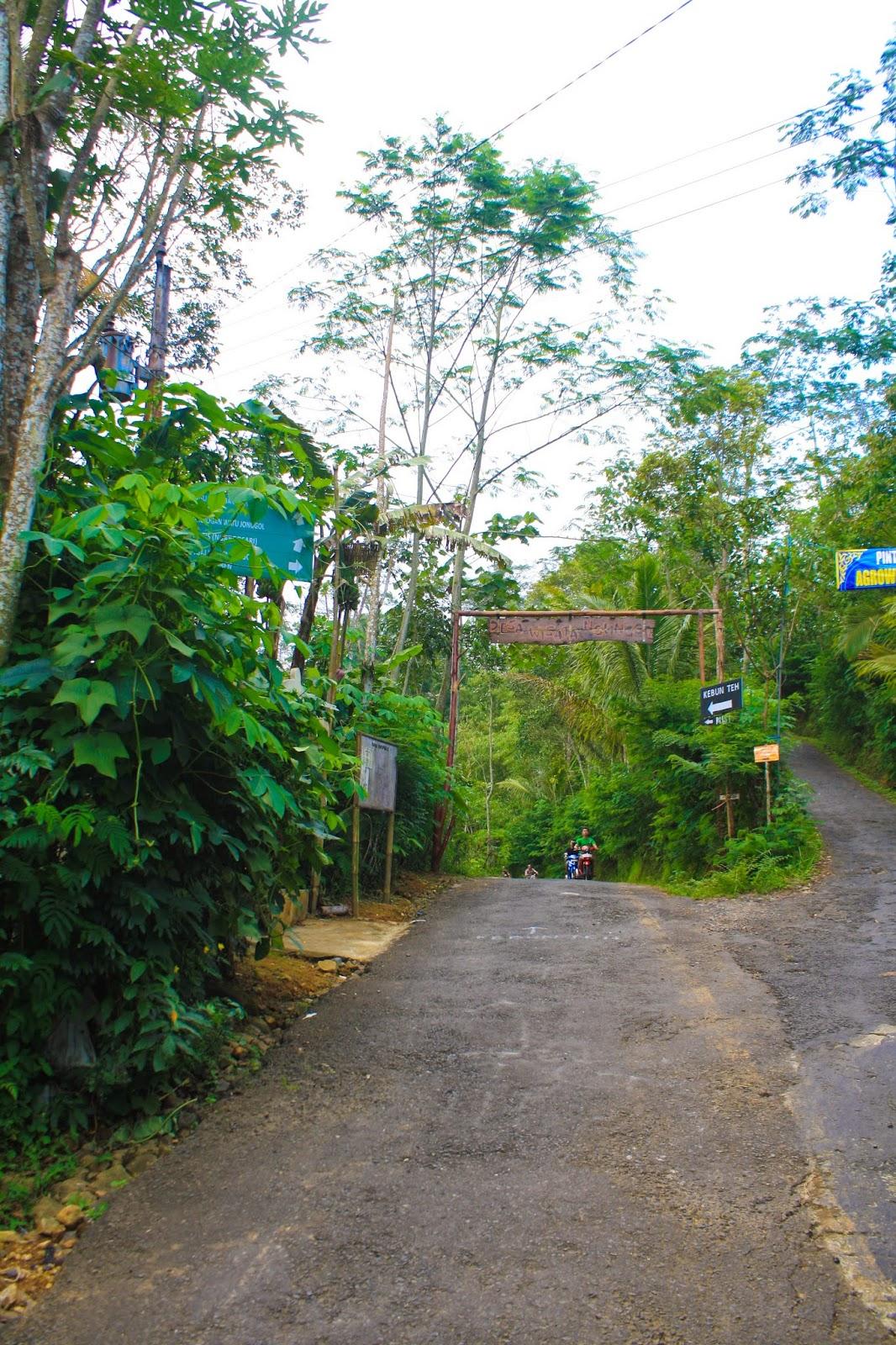 Wisata Jogja Kebun Teh Kulonprogo Yogyakarta Titik0jogja Blogspot 2015 02