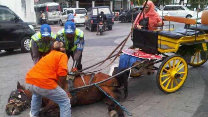 Breaking News Terpeleset Nol Kilometer Dua Ekor Kuda Penarik Andong